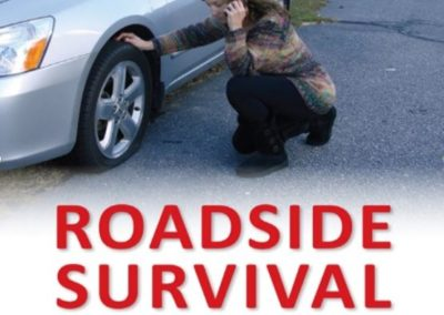 roadsidesurvival